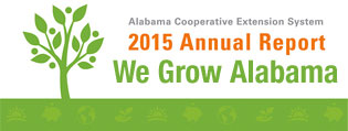 We Grow Alabama: 2015 Annual Report