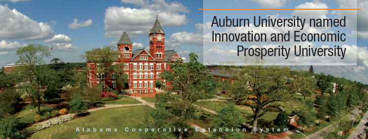 Auburn University named Innovation and Economic Prosperity University