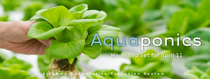 Aquaponics Workshop Set for April 11