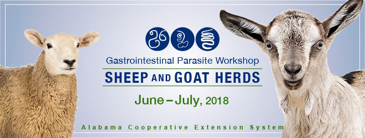 Gastrointestinal Parasite Workshop for Sheep and Goat Herds June to July 2018