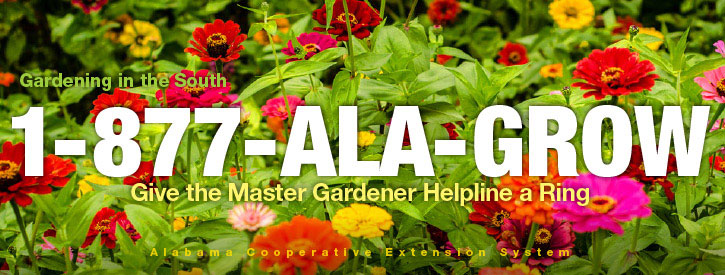 Give the Master Gardener Helpline a Ring 1-877-ALA-GROW