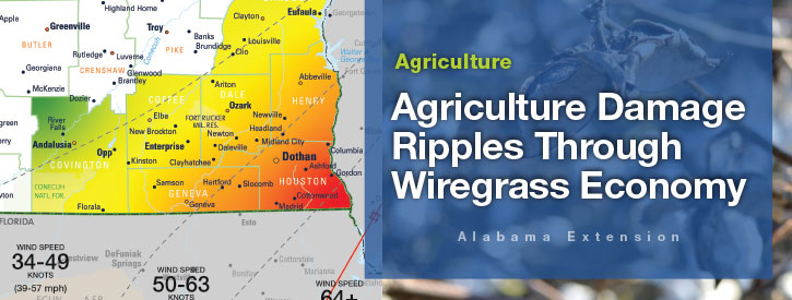 2018 Alabama Agriculture Damage Assessment Report