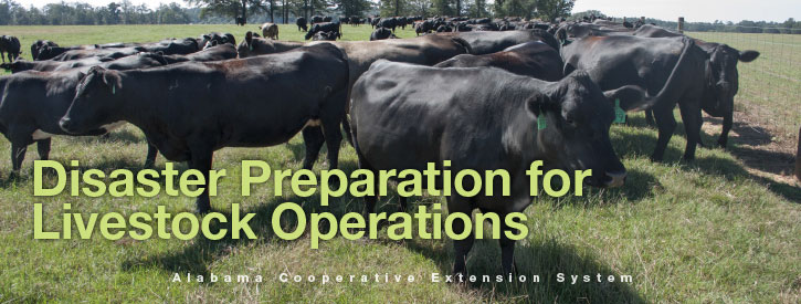 Disaster Preparation for Livestock Operations