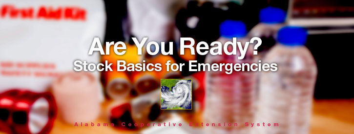 Are You Ready? Stock Basics for Emergencies