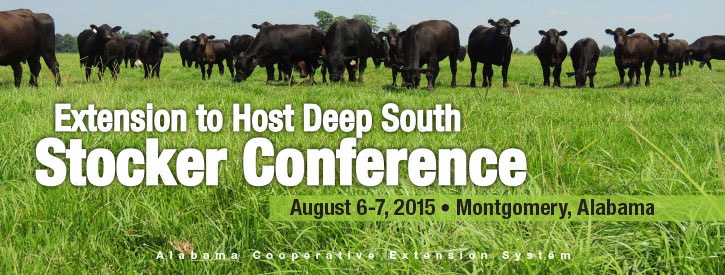 Extension to Host Deep South Stocker Steer Conference August 6-7, 2015 in Montgomery, Alabama