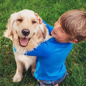 boy playing with golden retriever dog outside in the grass