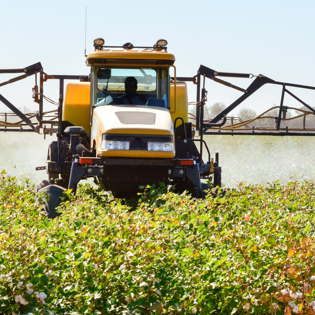 Spraying Pesticides in Cotton Field