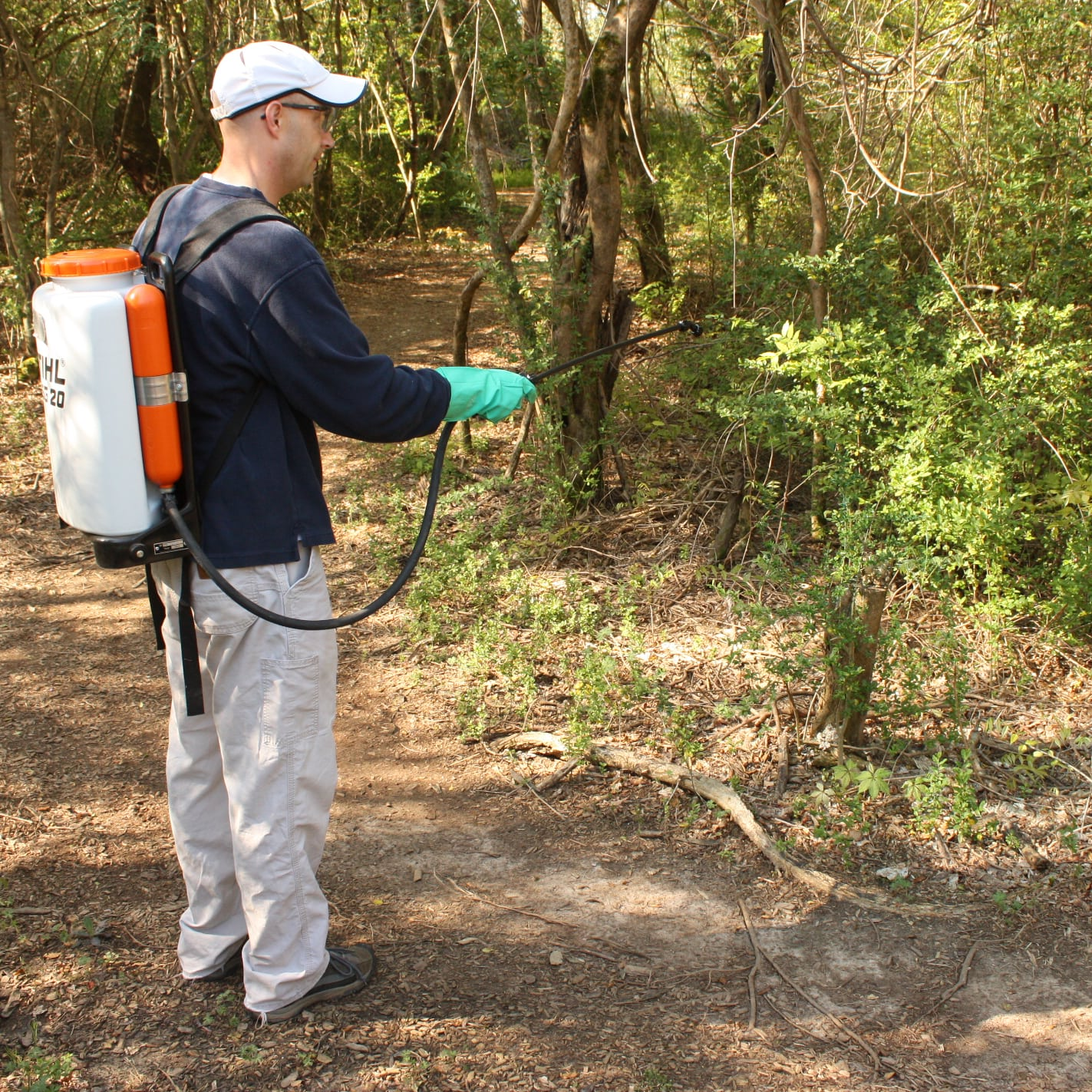 man with backpack sprayer spraying invasive