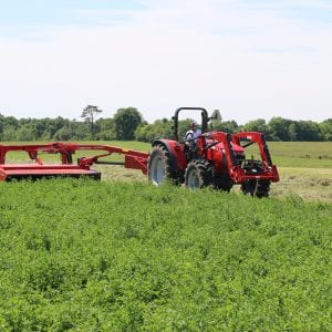 Mowing alfalfa mixtures for hay
