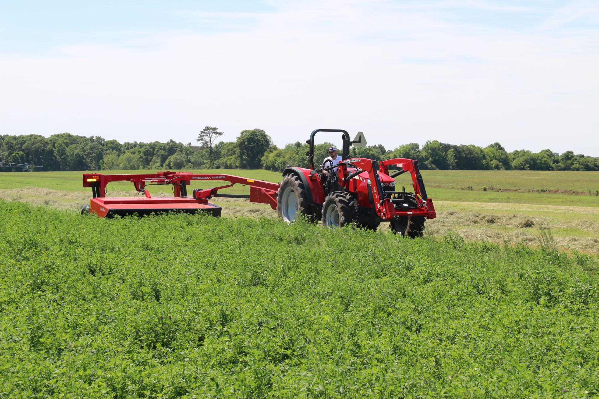 Mowing alfalfa mixtures for hay