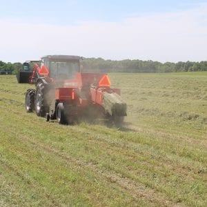 Baling alfalfa mixtures for hay