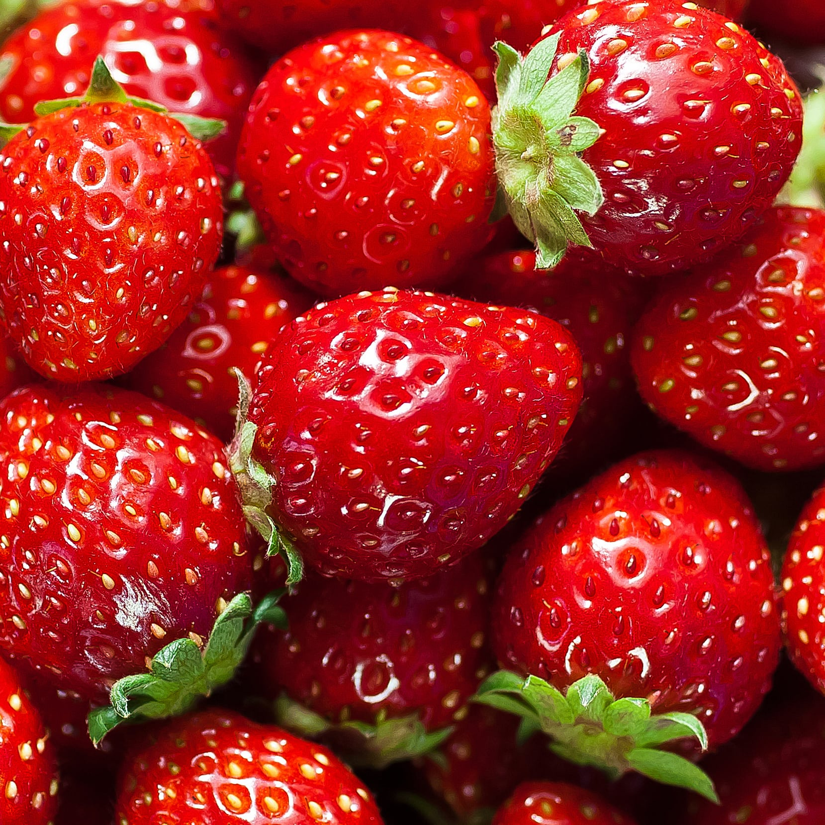 shot of many ripe strawberries