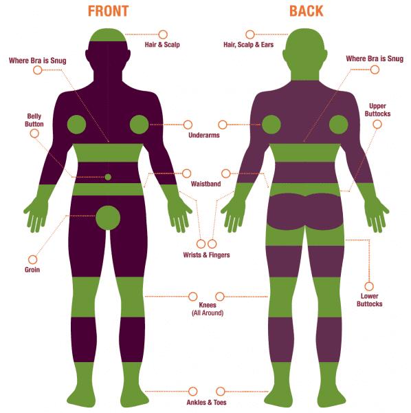 Tick Danger Zones Graphic of Human Body