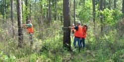 Cruising Timber and taking tree measurments