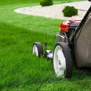 Push lawn mower mowing green grass.