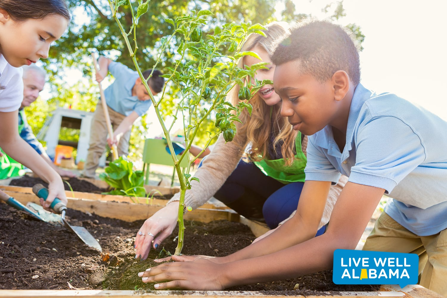 Elementary age students are working in school garden, and planting vegetables. Community gardens grow opportunities.