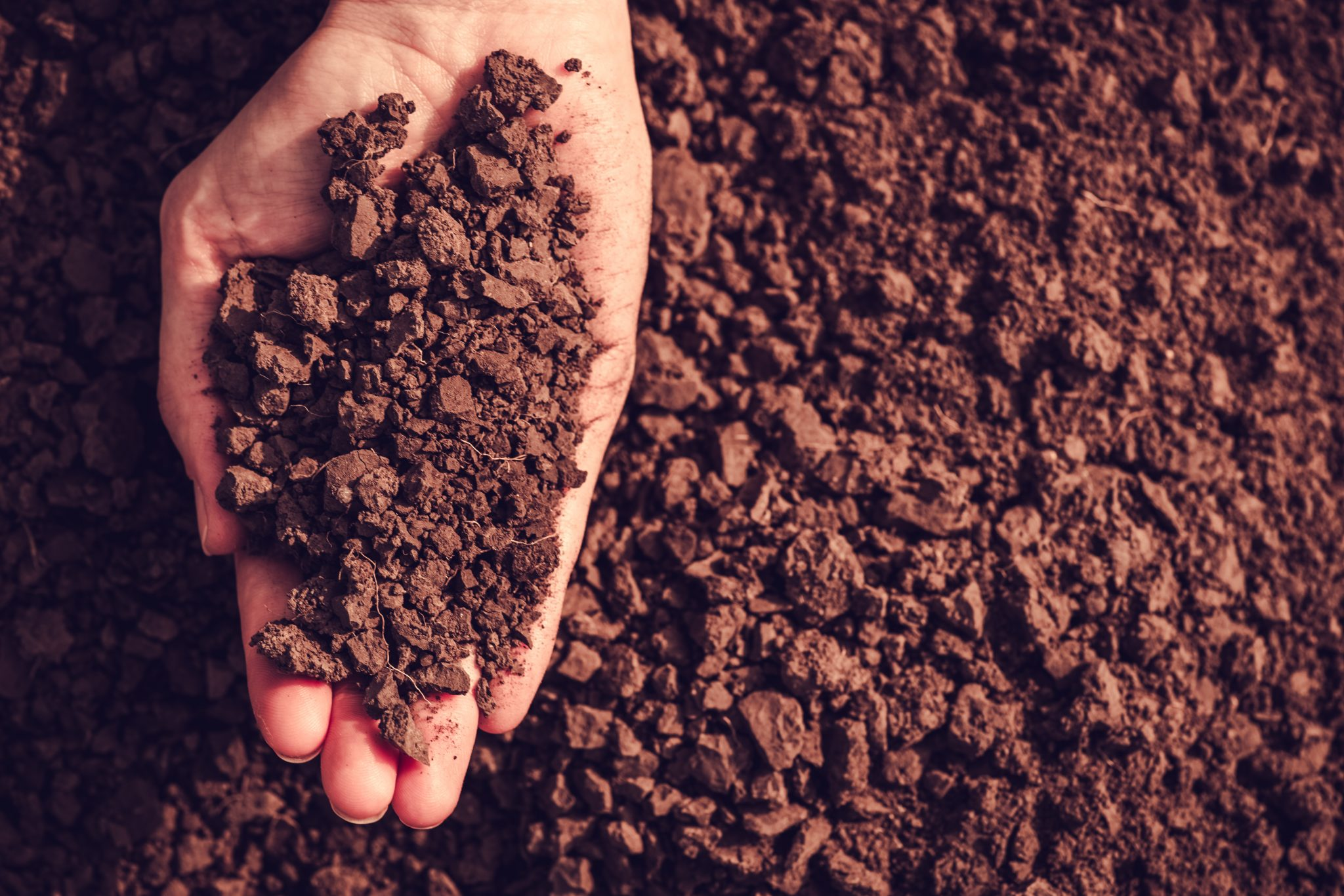 About Soil Conservation Benefits - Alabama Cooperative