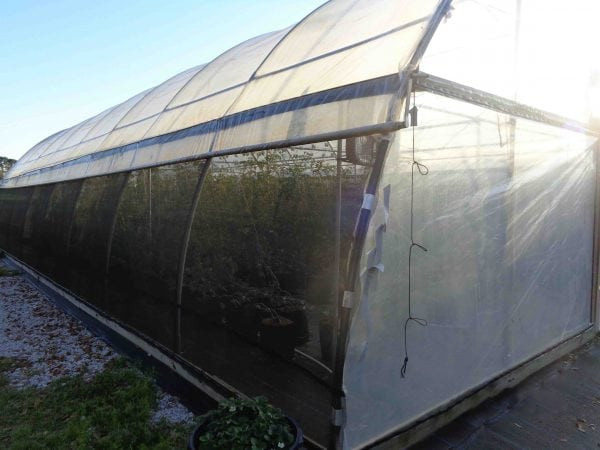 A high tunnel retrofitted with screens or shade cloth can keep insect pests away from crops.