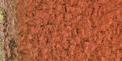 piedmont soil