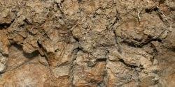 Limestone Valley soils.