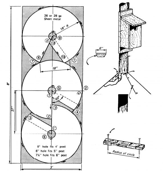 Figure 4. Construction details for a conical sheet metal predator guard are placed on the nest boxes or if entrance holes are large enough to allow starlings to reach down into nest boxes.