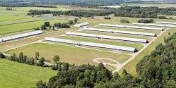 An aerial view of a large turkey farm