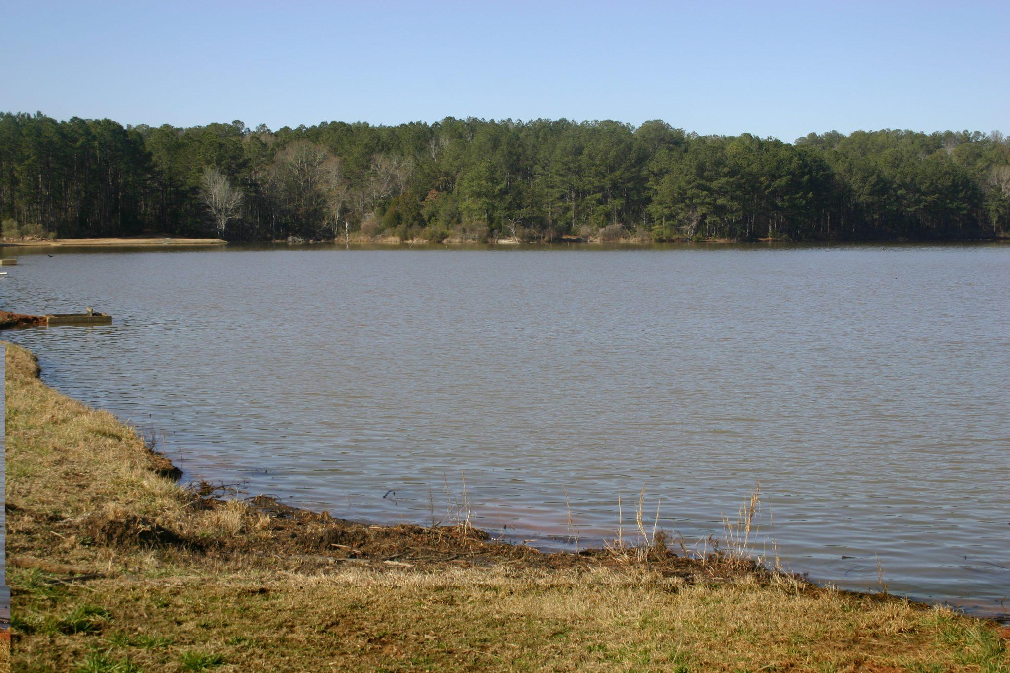 Alabama fishpond