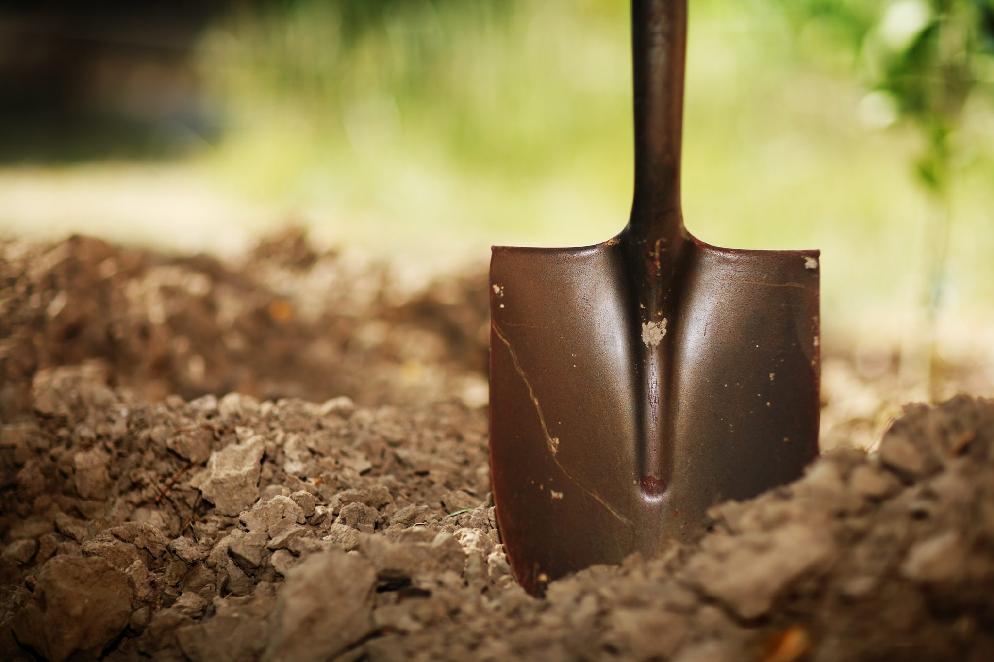 Soil with shovel. Close-up, shallow DOF. shutterstock.com/logoboom