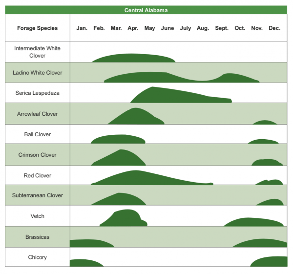 central alabama forages diagram