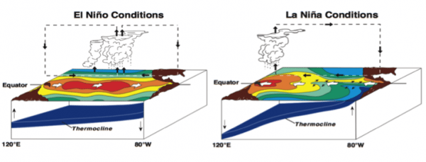 Figure 1. Water temperature and ocean conditions in the Pacific during El Niño (left) and La Niña (right). (Credit: NOAA)