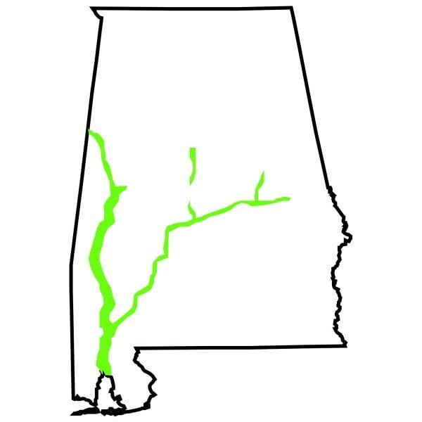 floodplains region