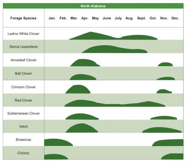 north alabama forages diagram 2