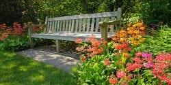 Bench in a flower garden.