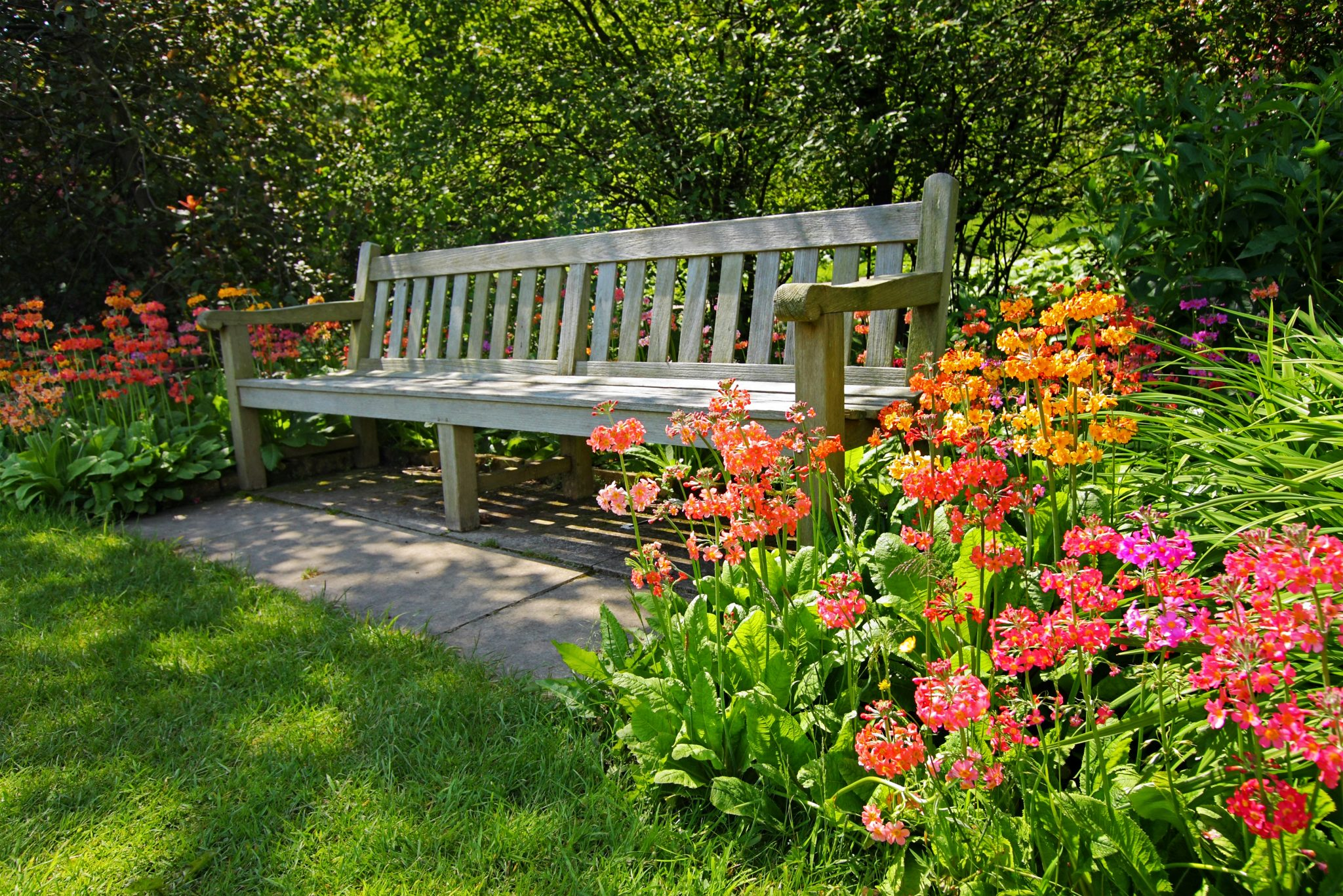 Bench in a flower garden.