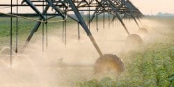 shutterstock.com/sima. Irrigating soybeans