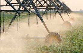 shutterstock.com/sima. Irrigating soybeans