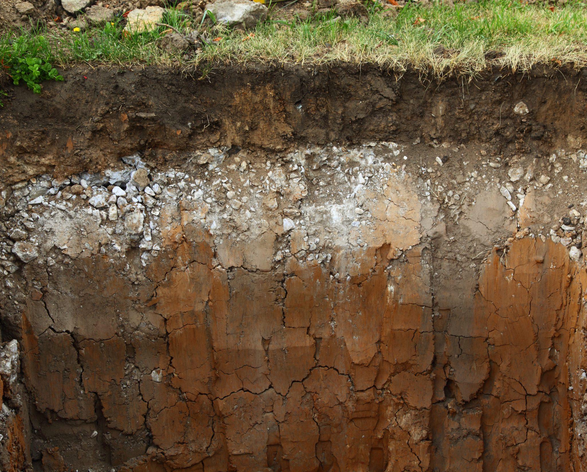 underground soil layers. shutterstock.com/Antonov Roman