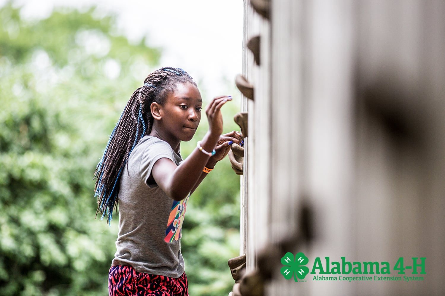re-enrolled Alabama 4-H member on climbing wall