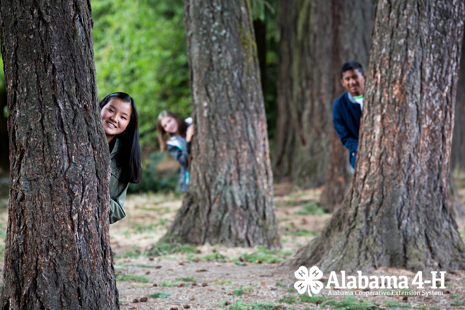 Alabama 4-H kids peaking from behind trees in a forest