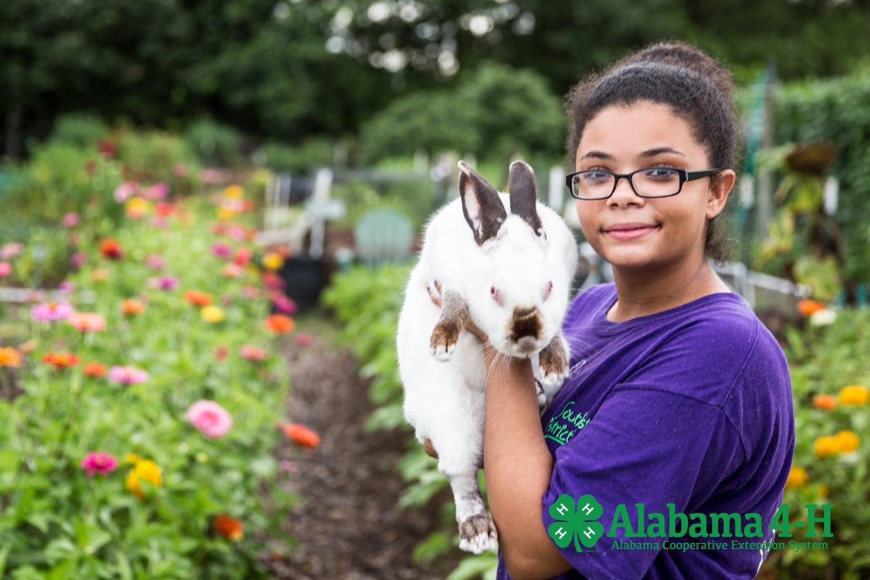 enrolled Alabama 4-H member holding rabbit