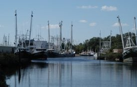 Alabama waterway with boats