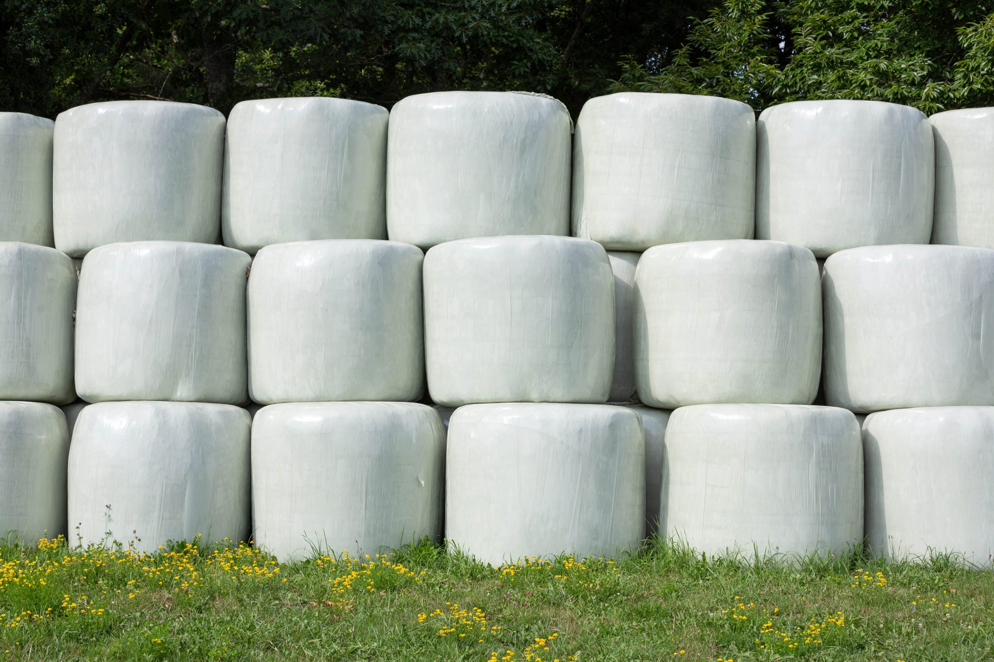 Stacked round bales wrapped.