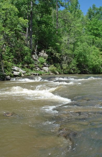 Flowing stream in Alabama