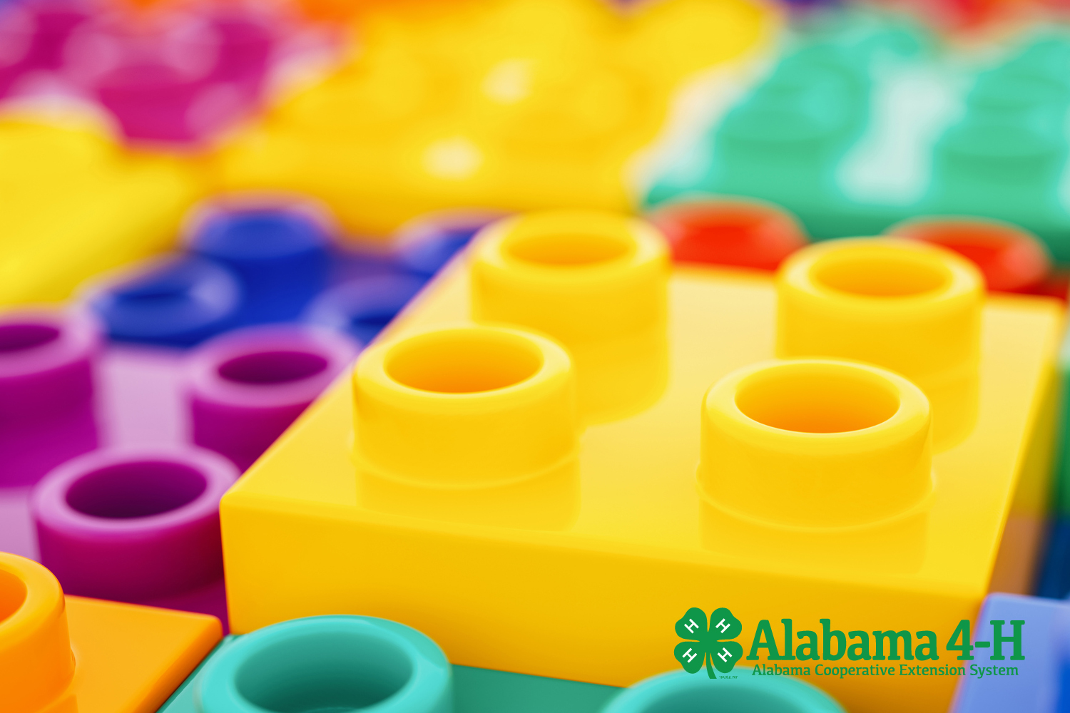 Alabama 4-H Blocks Rocks building blocks
