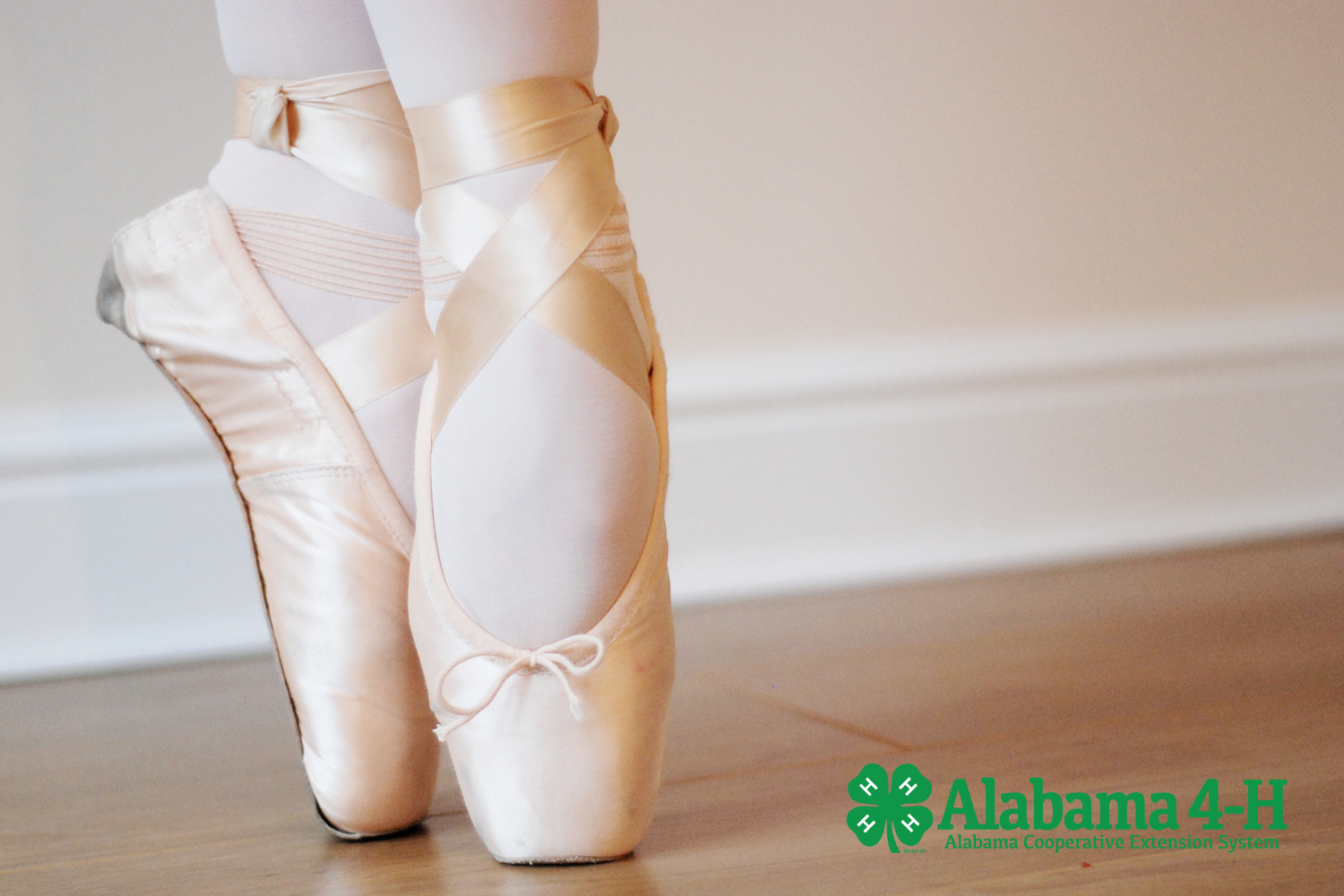 Alabama 4-H Freestyle Demonstration; ballet shoes