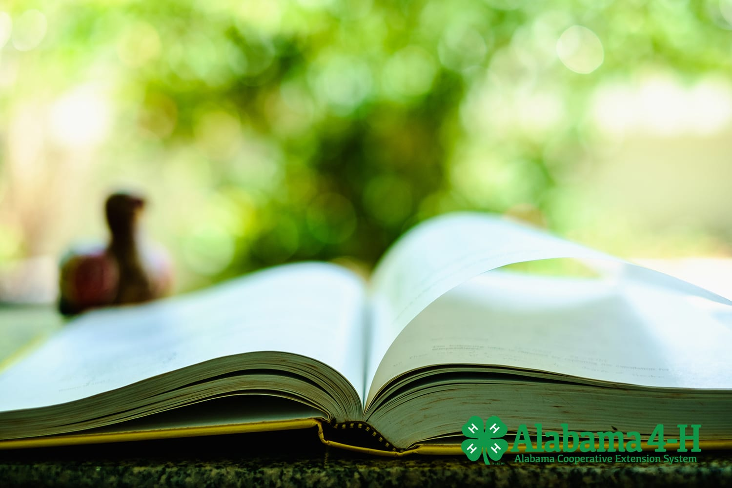 Alabama 4-H; book open on table for storytelling