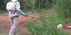 Farm Worker Applying Pesticides