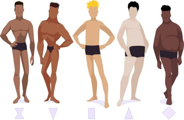 Illustration of the five men's body types