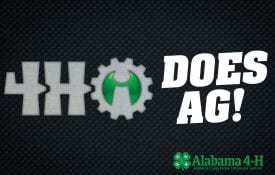 Alabama 4-H Innovators; 4-Hi Does Ag