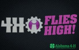 Alabama 4-Hi Flies High